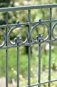 Closeup Iron Scroll Fence