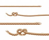Vector Set Of Realistic Brown Ropes, Jute Or Hemp Twisted Cords With Loops And Knots, Isolated On Wh poster