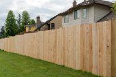 New Cedar Wood Fence Boards Along Garden Backyard Of Homes In Suburban Neighborhood poster