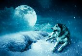 Photo Manipulation. Landscape At Snowfall With Super Moon. Majestic Night With Full Moon On Sky In W poster