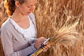 Woman Agronomist Writes Results Of His Experiment In The Wheat Field