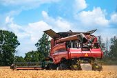 Combine Harvester In Action On Wheat Field. Harvesting Ripe Crop From The Fields. poster