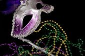 Purple Mardi Gra Mask