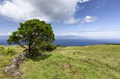 A View Of Sao Jorge Island From Pastures On Pico Island In The Azores, Portugal. poster