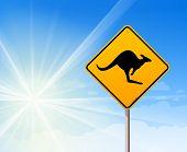 Känguru Schild am blauen Himmel