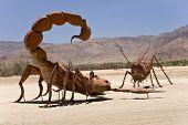Desert Stand Off