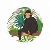 Monkey Animal Marmoset On Tropical Tree With Palm Monstera Leaves Vector Illustration. Jungle Exotic poster