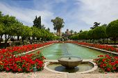 Gardens at the Alcazar, Cordoba, Spain