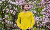 Botanical Garden. Botany And Nature. Man Flowers Background Defocused. Spring Beauty. Freshness And  poster