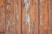 Faded Wooden Boards With Corrosion. Cleaned Wooden Doors From Several Planks. Old Natural Wooden Boa poster