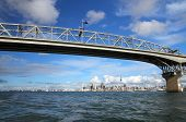Auckland City y el Harbour Bridge