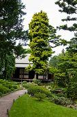 Albert Khan - japanese garden