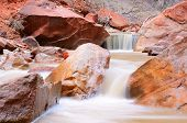 Virgin River im Zion-Nationalpark