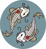 image of koi tattoo  - Color vector illustration of koi carps - JPG