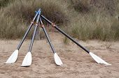 Four Surf Rowing Oars On The Beach