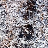 Ice Crystals Under Frozen Stream