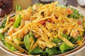Closeup Of Taco Salad With Chicken