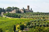 Landscape Near San Gimignano (tuscany)