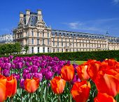 stock photo of garden sculpture  - The Palace in the Luxembourg Gardens Paris France - JPG
