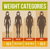 Body-mass-Index retro Poster.