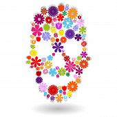Flower Skull In Colors Over White