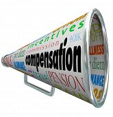 Compensation Bullhorn Megaphone Pay Commission Salary