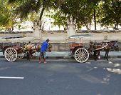 Kuta, Bali horse cart