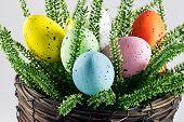 Dyed Easter Eggs In Wicker Pot