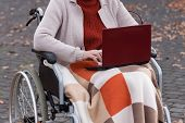 Modern Disabled Lady On Wheelchair