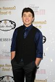 LOS ANGELES - APR 27:  Bradley Steven Perry at the Ryan Newman's Glitz and Glam Sweet 16 birthday party at Emerson Theater on April 27, 2014 in Los Angeles, CA