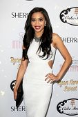 LOS ANGELES - APR 27:  Samantha Logan at the Ryan Newman's Glitz and Glam Sweet 16 birthday party at