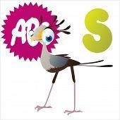 S is for Secretary bird