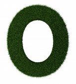 Grass alphabet-O