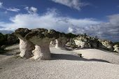Stone Mushrooms Natural Phenomenon