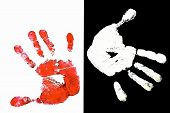 stock photo of dna fingerprinting  - Detailed view of a red hand print on a white background and white hand on black background - JPG