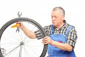 Mature bicycle mechanic looking at a wheel isolated on white background