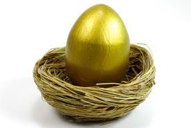 stock photo of nest-egg  - nest and gold egg - JPG