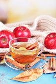 Composition of  apple cider with cinnamon sticks, fresh red apples, warm scarf and autumn leaves on wooden table, on bright background