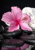 Healthcare Concept Of Pink Hibiscus  With Drops And White Stacked Towels On Zen Stones In Reflection