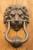 Door Lion Knocker