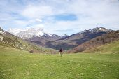 Walking On Prairie At Picos De Europa