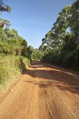 Typical Kenyan Dirt Road