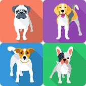 Set Dog Icon Flat Design