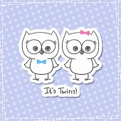 picture of baby twins  - vector little owls twins - JPG