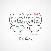 owls twins