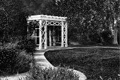 Garden Trellis And Path In Black And White