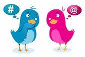 Birds love communicatio