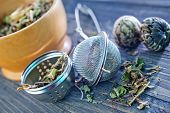 herbs for brewing tea