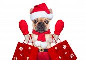 picture of dog christmas  - santa claus christmas dog isolated on white background waving hands and shopping on sale - JPG