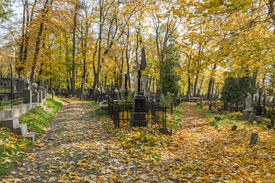 picture of urn funeral  - A very old cemetery photographed in autumn - JPG